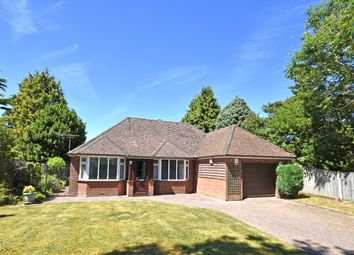 Thumbnail 3 bed detached bungalow for sale in Dixter Lane, Northiam