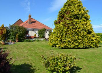 Thumbnail 4 bed detached bungalow for sale in Catcott Road, Burtle, Bridgwater