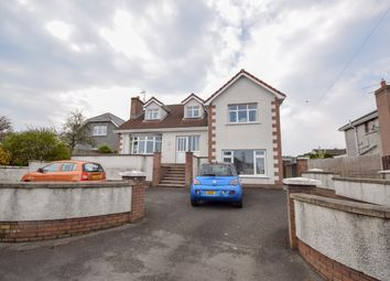 Thumbnail 4 bed detached house for sale in Carniny Road, Ballymena