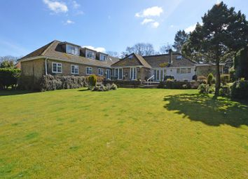 Thumbnail 6 bed detached house for sale in The Shrave, Four Marks, Alton, Hampshire