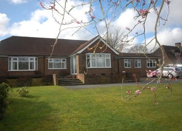 Thumbnail 4 bed bungalow to rent in Straight Half Mile, Maresfield, Uckfield