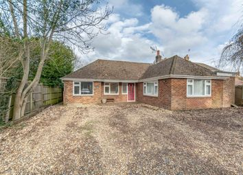 Nyton Road, Westergate, Chichester PO20. 3 bed detached bungalow for sale