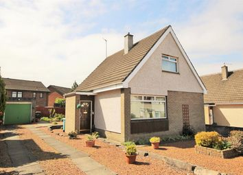 Thumbnail 3 bed detached house for sale in Airbles Crescent, Motherwell