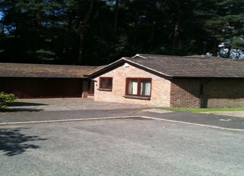 Thumbnail 4 bed bungalow to rent in Spring Gardens, Copthorne, Crawley