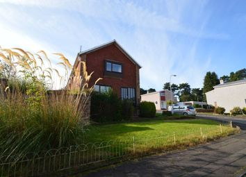 Thumbnail 4 bed semi-detached house to rent in Willow Crescent, Glenrothes