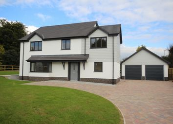 Thumbnail 4 bed detached house for sale in Burrington, Umberleigh