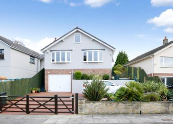 Thumbnail 4 bed detached bungalow for sale in Fern Road, Newton Abbot, Devon