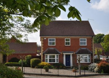 Thumbnail 4 bed detached house for sale in Hazel Rise, Claydon, Ipswich