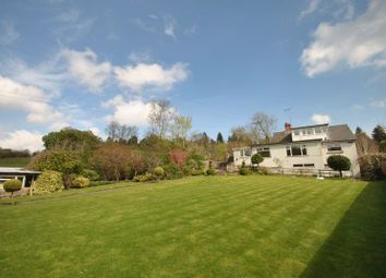 Thumbnail 3 bed bungalow for sale in Clements End, Coleford, Gloucestershire