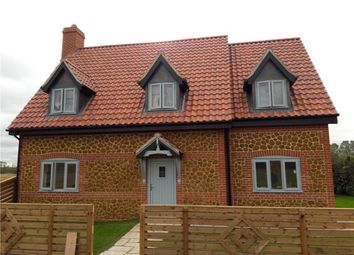 Thumbnail 4 bed detached house to rent in Teal Cottage, Magpie Farm Road, West Bilney