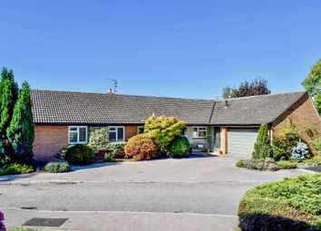 Thumbnail 4 bed detached bungalow for sale in Coplestons, Trull, Taunton