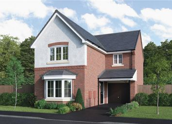 "Thumbnail 3 bed detached house for sale in ""Hayfield"" at Hendrick Crescent, Shrewsbury"