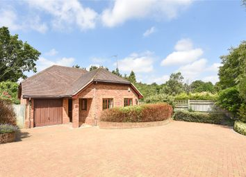 Thumbnail 3 bed detached house to rent in Bearwood Road, Wokingham, Berkshire