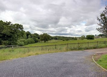 Thumbnail Land for sale in Milton Mains, Milton, Brampton, Cumbria