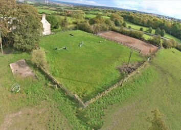 Thumbnail Commercial property for sale in Kennels, Cattery & Equestrian Businesses LS27, Gildersome, West Yorkshire