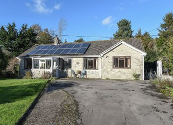 Thumbnail 4 bed bungalow for sale in Askerswell, Dorchester