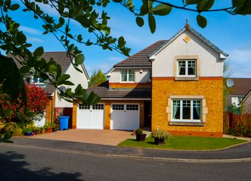 Thumbnail 4 bed detached house for sale in Souter Way, Larbert