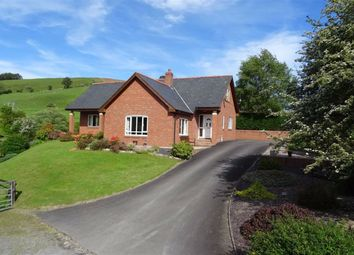 Thumbnail 4 bedroom bungalow for sale in Pen Llety, Gorn Road, Llanidloes, Powys