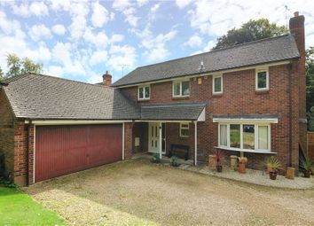 Thumbnail 4 bedroom detached house to rent in St Leonards Avenue, Blandford Forum, Dorset