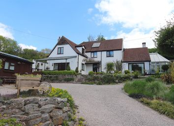 Thumbnail Detached house for sale in Apple Tree Cottage, Ashcombe Road, Higher Dawlish Water