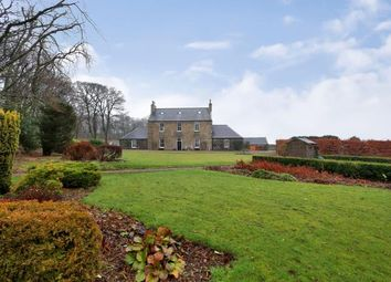 Thumbnail 6 bedroom detached house to rent in Tarves, Ellon