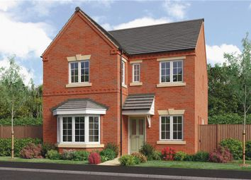"Thumbnail 4 bedroom detached house for sale in ""Calver"" at Jawbone Lane, Melbourne, Derby"