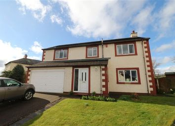 Thumbnail 4 bed detached house for sale in The Meadows, Southwaite, Cumbria