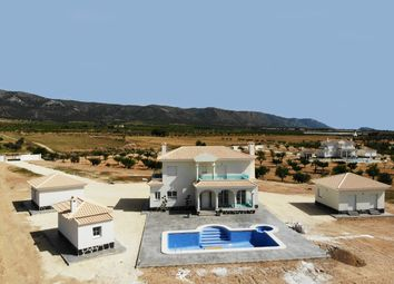 Thumbnail 4 bed country house for sale in Valencia, Alicante, Crevillente