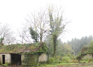 Thumbnail 2 bed cottage for sale in Cleendargan, Ballinamore, Leitrim