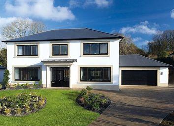 Thumbnail 5 bed detached house for sale in Rosebank, Castleward Green, Douglas