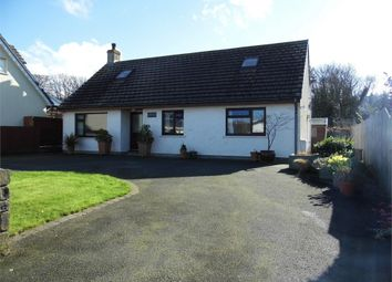 Thumbnail 4 bed detached bungalow for sale in Pafin Bach, Carreg Coetan, Newport, Pembrokeshire