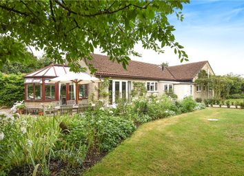 Thumbnail 4 bed detached bungalow for sale in King Stag, Sturminster Newton, Dorset