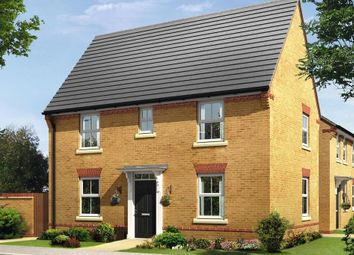 """Thumbnail 3 bedroom detached house for sale in """"Hadley"""" at Sorrel Close, Uttoxeter"""