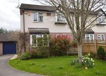 Thumbnail 4 bed semi-detached house for sale in Forbes Close, Heathfield, Newton Abbot, Devon.