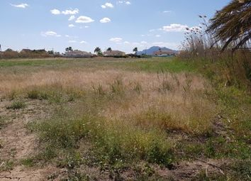 Thumbnail Land for sale in Catral, Catral, Spain