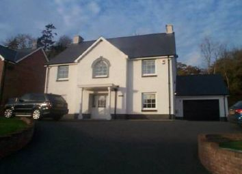 Thumbnail 4 bed detached house for sale in Glanarberth, Llechryd, Cardigan