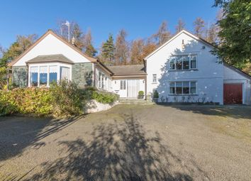 Thumbnail 3 bed detached house for sale in Cedar Lodge, Black Beck Wood, Windermere
