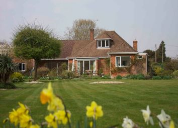 Thumbnail 4 bed detached house to rent in Otterbourne, Winchester, Hampshire