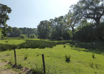Thumbnail Equestrian property for sale in Woodhouse Fields, Uplyme, Lyme Regis, Devon