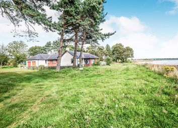 Thumbnail 4 bed bungalow for sale in Balintraid, Invergordon, Highland