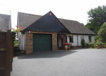 Thumbnail 4 bedroom detached bungalow for sale in Llechryd, Cardigan