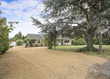 Thumbnail 3 bed bungalow for sale in Outwell, Norfolk