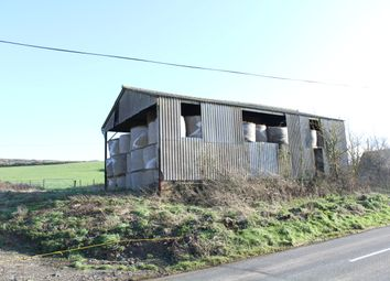 Thumbnail Barn conversion for sale in Hollow Glade, Godshill, Ventnor