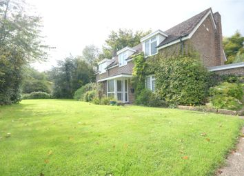 Thumbnail 4 bed detached house to rent in Wotton, Dorking, Surrey