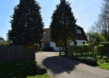Thumbnail 4 bed bungalow for sale in Martins Lane, Birdham, Chichester, West Sussex