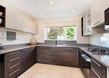 Thumbnail 5 bed property to rent in Cottenham Place, London