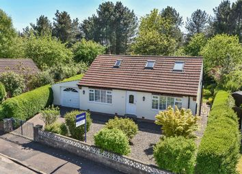 Thumbnail 3 bed detached bungalow for sale in Scotton Drive, Knaresborough