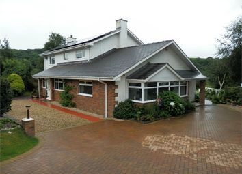 Thumbnail 4 bed detached house for sale in Cnwc Y Lili, New Quay, Ceredigion