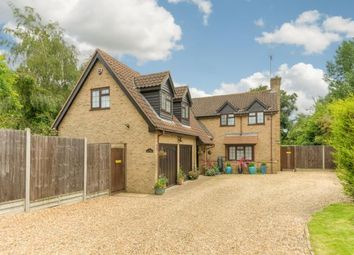 Thumbnail 5 bed detached house for sale in Forge Gardens, Yielden, Bedford, Bedfordshire