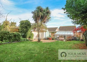 Thumbnail 3 bed bungalow for sale in The Chestnuts, Wrentham, Beccles